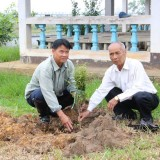 โครงการปลูกต้นไม้เพิ่มพื้นที่สีเขียวในเขตเทศบาลตำบลแม่อาย